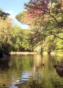 Parque de el capricho en Madrid