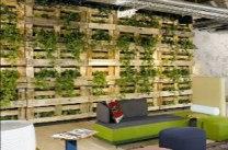 Reforma de hotel realizada por Werner Aisslinger, una gran pared de palets llenas de plantas dan frescura al hall de entrada.
